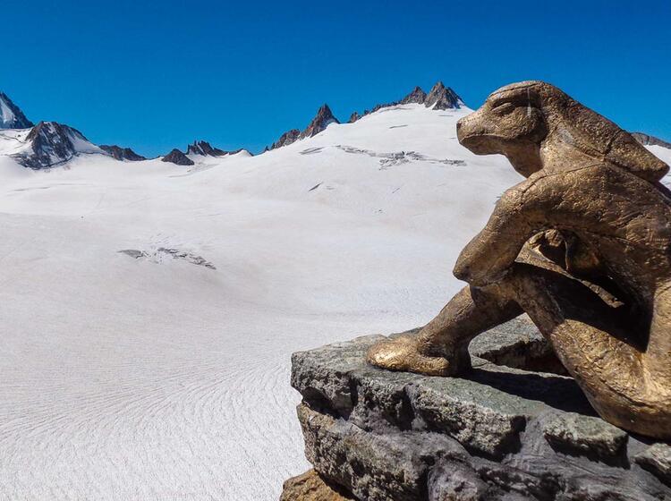 Akklimatisationstour Fuer Den Mont Blanc Auf Der Trient Huette In Der Schweiz