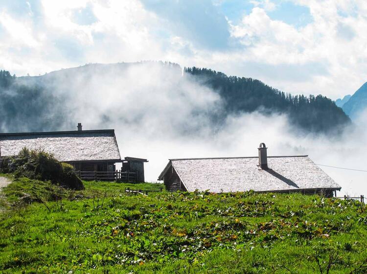 Almenwelt Im Nationalpark Berchtesgaden