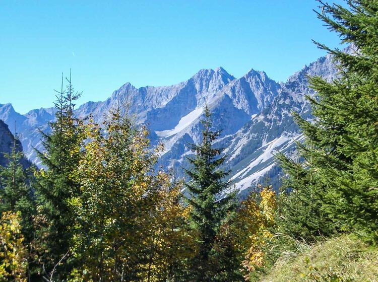 Alpenu Berquerung Mit Dem Fahrrad