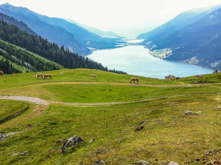 Alpenu Berquerung Mit Dem Mtb