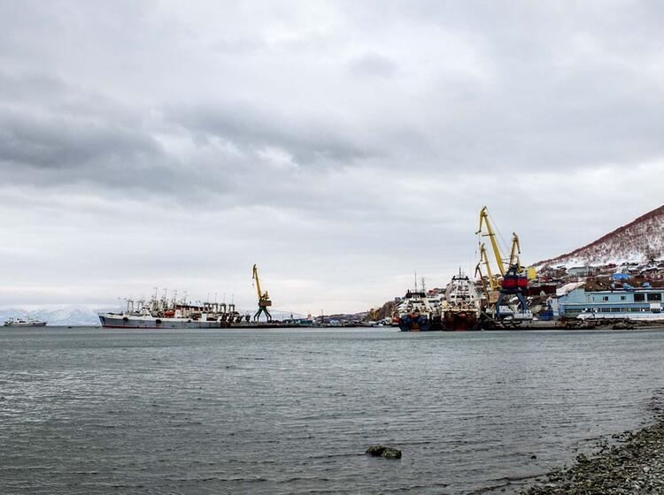 Am Hafen Petropavlovsk In Kamtchatka
