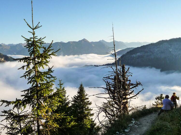 Aussicht Von Der Roten Flu H Im Tannheimer Tal Beim Wandern
