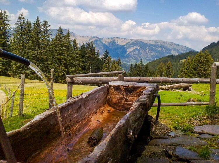 Bergwandern Im Allgaeu In Der Hoernergruppe