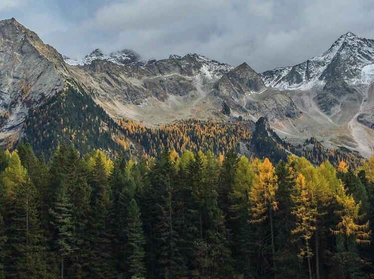 Bergwandern In Suedtirol