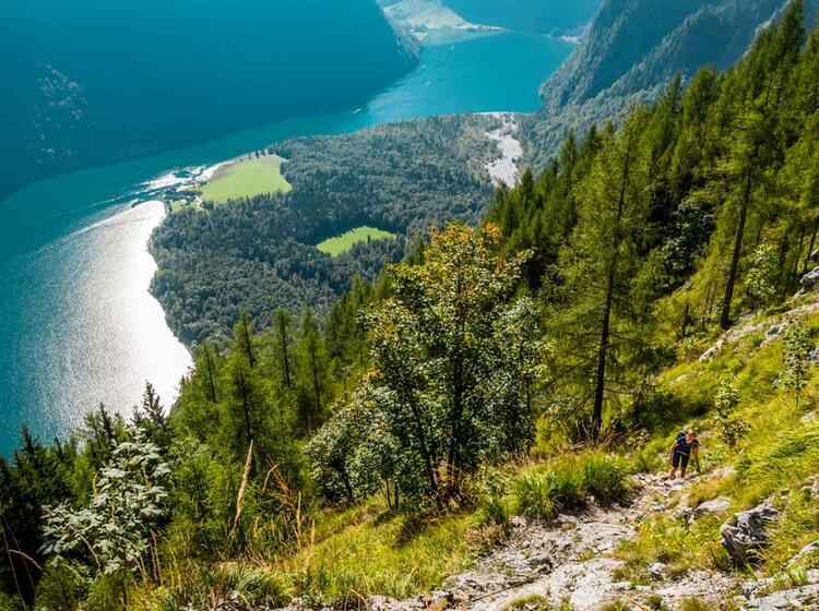 Bergwandern Vom Koenigssee Ueber Den Ringkendlsteig Zum Watzmann