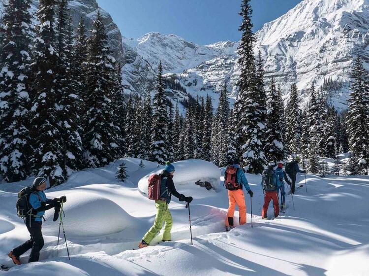 Canmore Kanada Organisierte Skitouren Mit Bergfuehrer