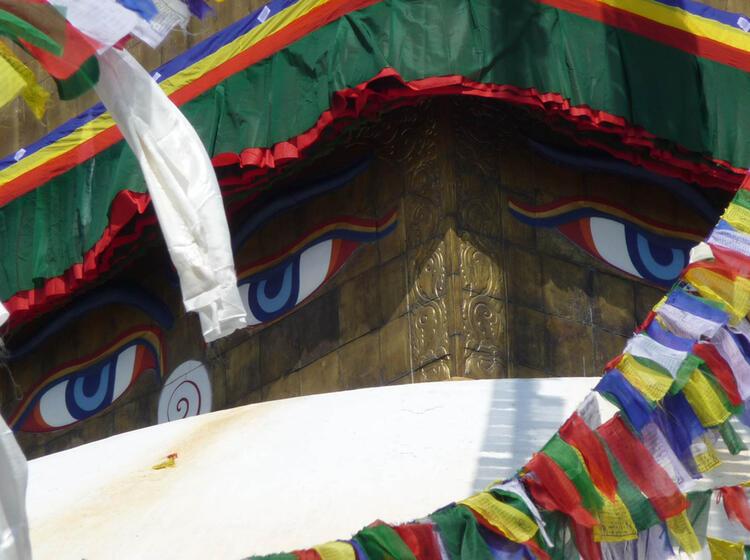 Cho Oyu Expedition Mit Bergfuehrer