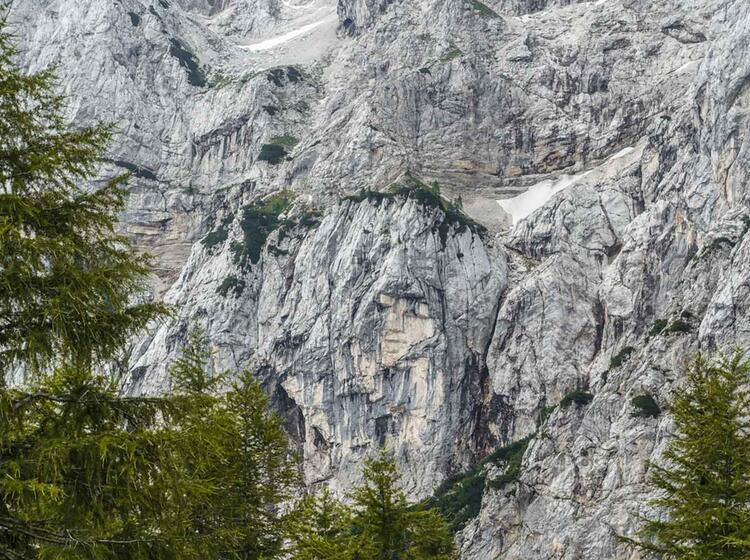 Das Felsengesicht Des Prisojnik