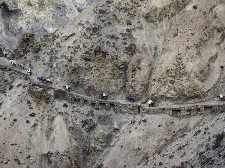 Der Expeditionstross Auf Dem Weg Zum Himlung Himal