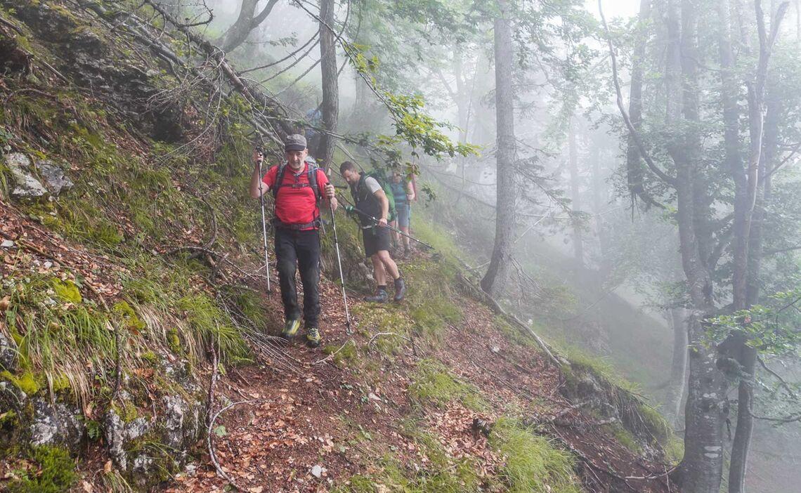 Der Weg Ins Tamar Tal