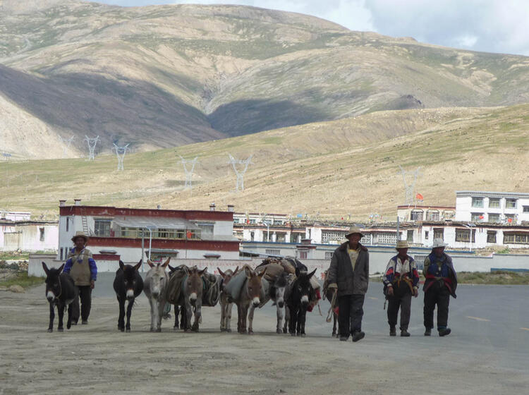 Die Alpinschue Auf Dem Trekking In Tibet