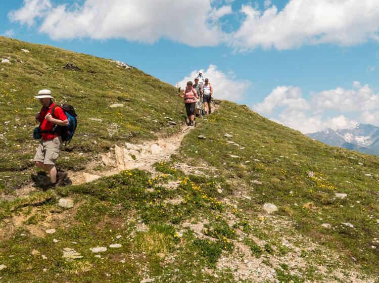 Die Kaiserkrone Wandern In Going Und Kitzbuehl