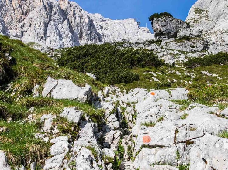 Die Zugspitze Ist Bereits Zu Sehen Davor Der Klettersteig Durch Das Hoellental