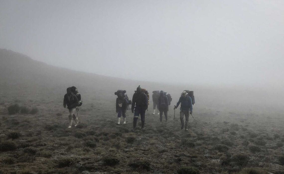 Drakensberge Nebel