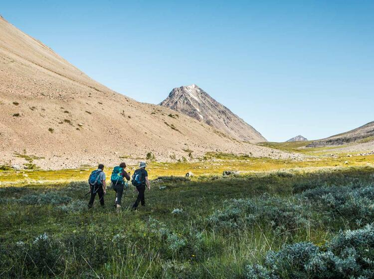 Eindrucksvoll Und Einsam Wandern Im Lyngen Fjord Tromsoe