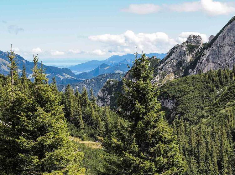 Einsteiger Wanderung In Der Naehe Von Muenchen Am Schliersee
