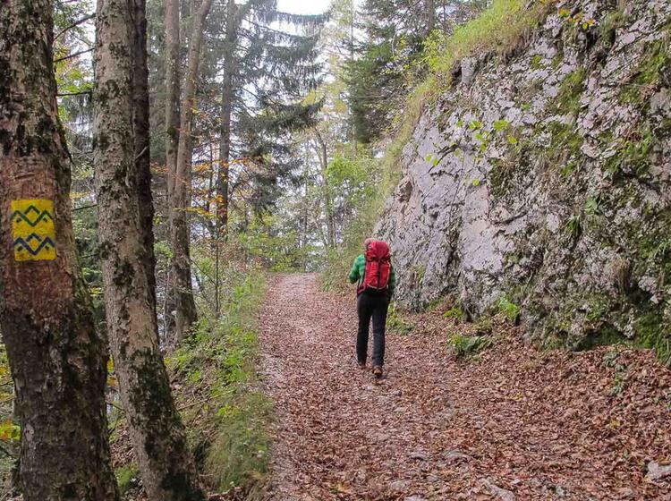 Einsteiger Wanderung Ueber Den Salzalpensteig Vom Chiemsee Nach Berchtesgaden