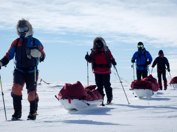 Expeditionsteilnehmer Auf Dem Weg Mit Pulka Zum Su Dpol