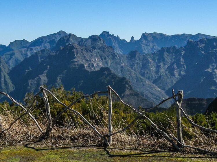 Fernreise Nach Madeira Zum Wandern