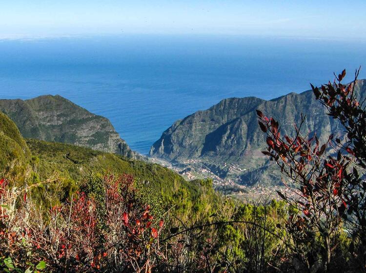 Fuehrer Fuer Wanderwoche Madeira
