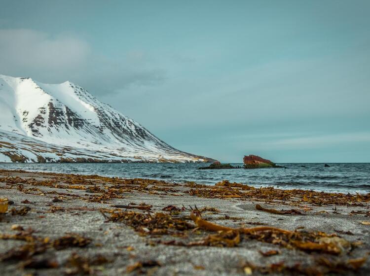 Gefu Hrte Skitouren Auf Island