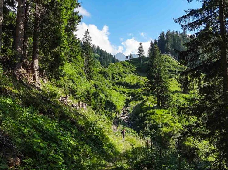 Gefuehrte Alpenueberquerung Von Oberstdorf Nach Meran