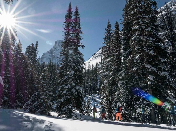 Gefuehrte Skitourenreise Nach Kanada