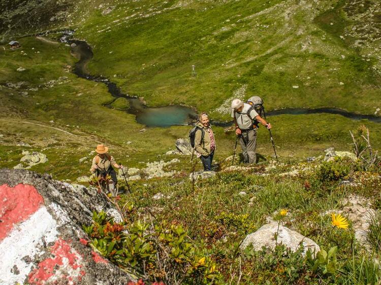 Gefuehrte Wanderungen In Tirol