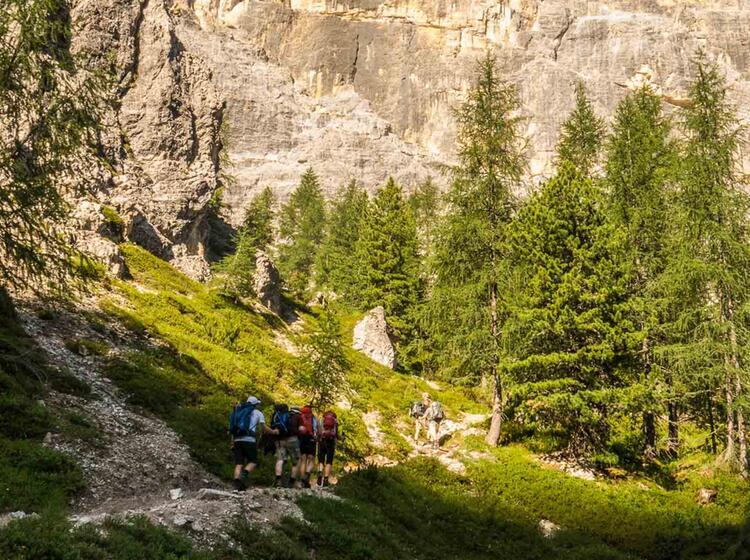 Gefuehrtes Bergwandern Ueber Die Alpen Abseits Des E5