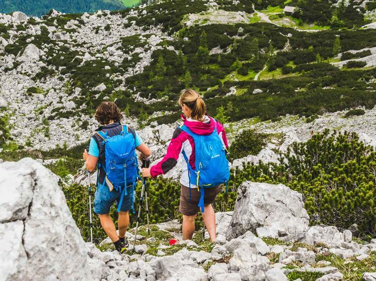 Gehen Mit Stoecken Im Abstieg Beim Wandern Am Kurs Fuer Bergwandern