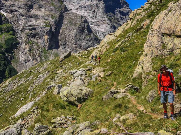 Gletscher Wandern Mit Bergfuehrer
