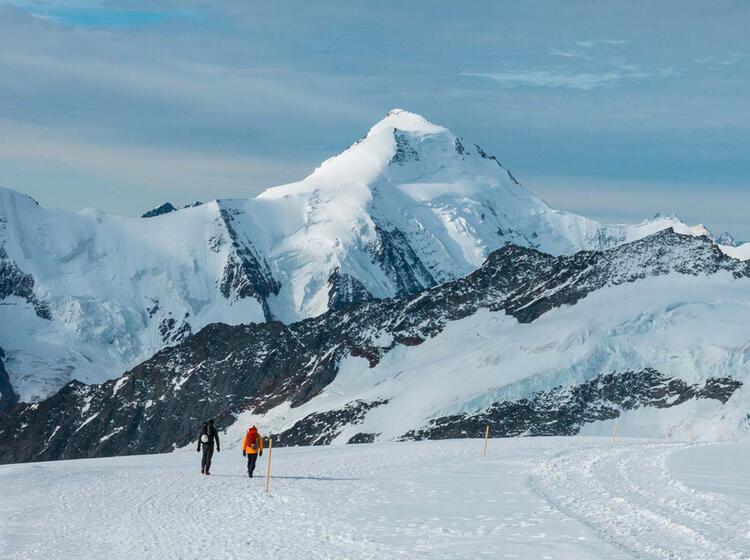 Gletscherwanderung Aletsch Gletscher