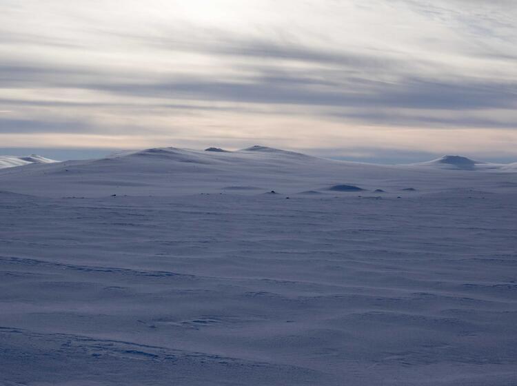 Hardangervidda Landschaft