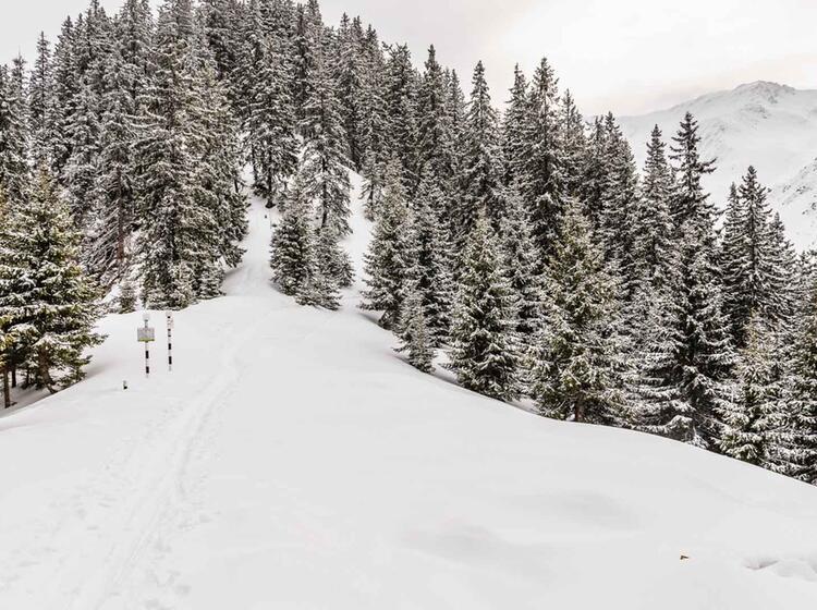 Hochwinterliche Verhaeltnisse Bei Der Skitourenreise Karpaten Rumaenien
