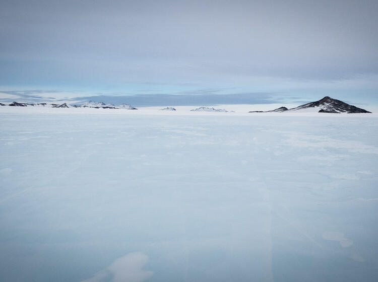 Ice Runway Union Glacier Blaueis Blueice