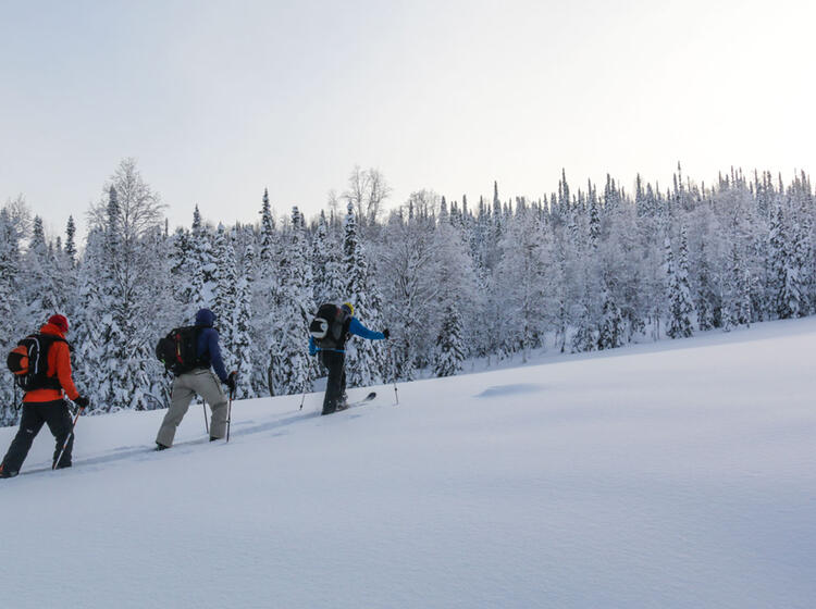 Im Dezember Zum Skitouren Nach Sibirien