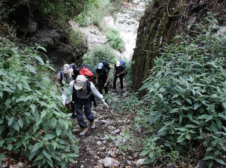 Im Zustieg Nach Koto Annapurnatrail