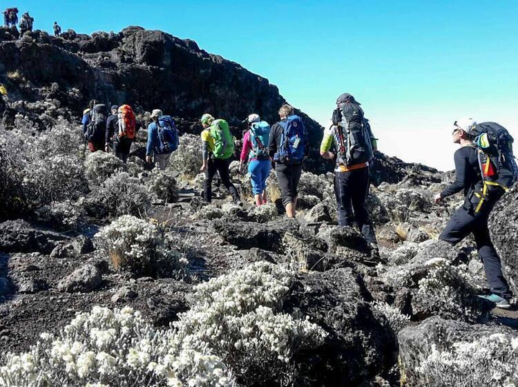Kilimandscharo Besteigung 26