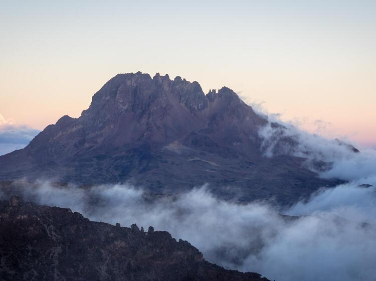 Kilimandscharo Besteigung 478