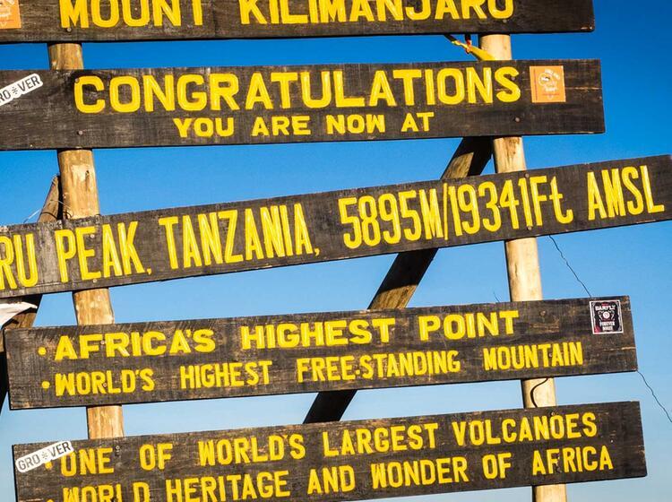 Kilimandscharo Besteigung 502