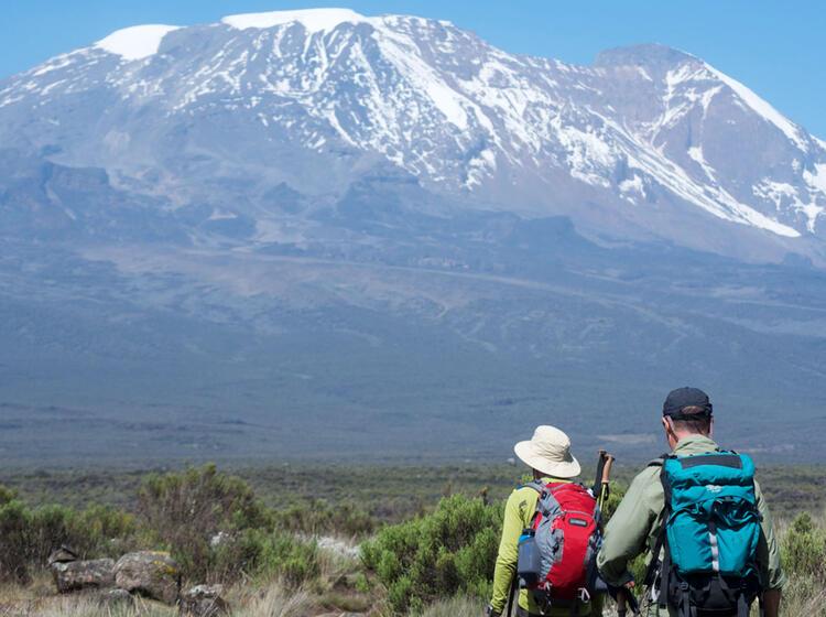 Kilimandscharo Besteigung Lemosho 5