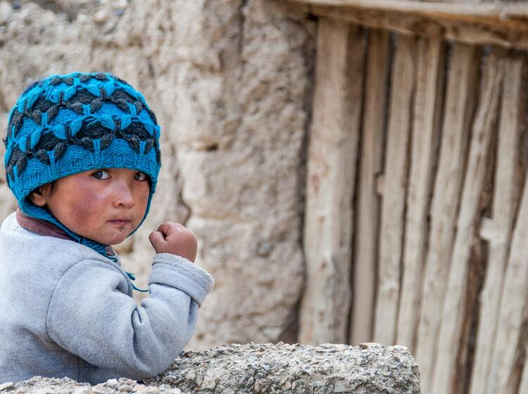 Ladakh Trekking Und Bergsteigen