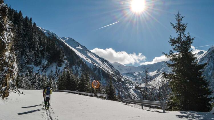 Mit Bergfuehrer In Die Karpaten