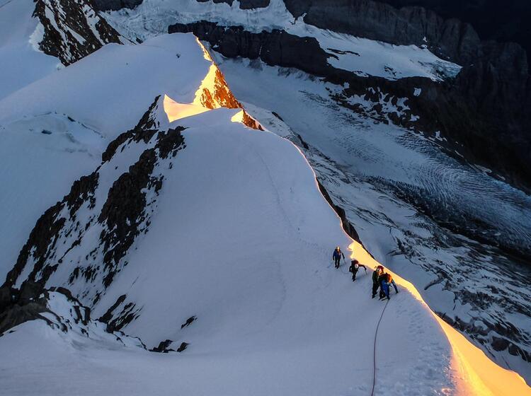 Mit Bergfuehrer Zum Fiescherhorn Auf Der Viertausender Woche Im Berner Oberland