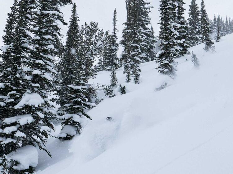 Mit Bergfuehrer Zum Skitouren Gehen Nach Kanada