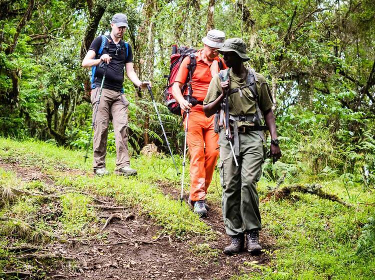 Mit Fuehrer Auf Den Mount Meru Und Kilimandscharo