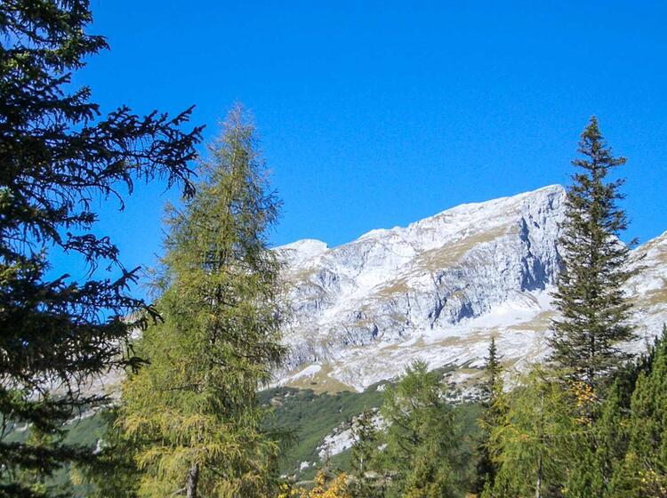 Mountainbiken Im Gebirge