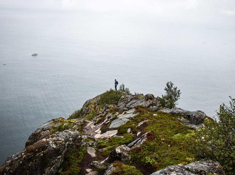Mysthische Stimmung Auf Den Lofoten