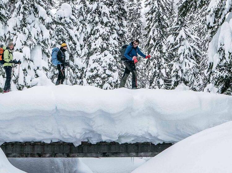 Organisierte Skitourenreise Nach Kanada Mit Bergfuehrer