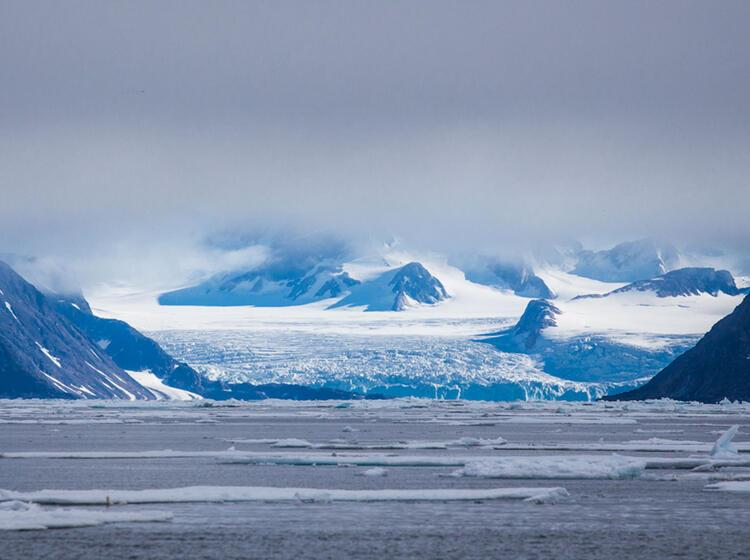 Packeis Bei Der Wanderreise Nach Spitzbergen